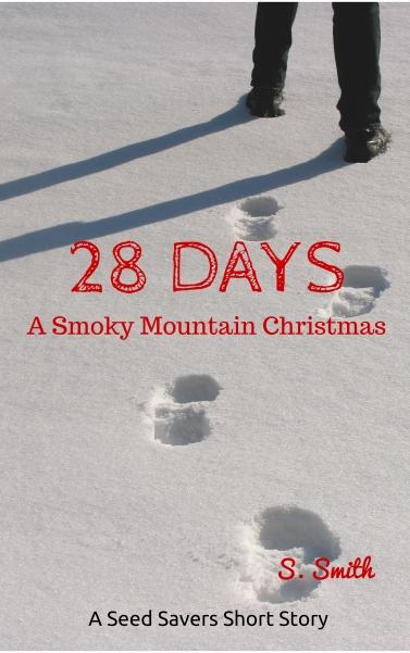 kdp 28 days